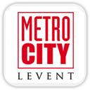 metrocty logo